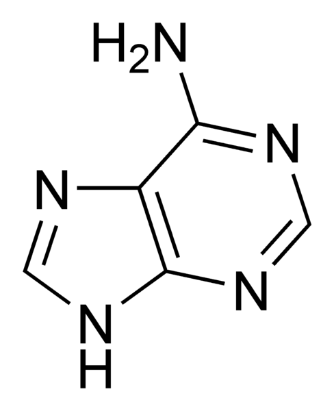 adenina png