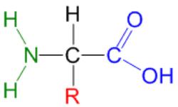 estructura quimica de esteroides anabolicos