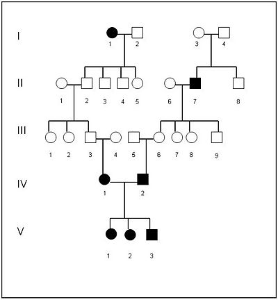 Árvore genealógica wikiciências