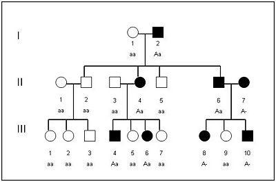 Arvore Genealogica Wikiciencias